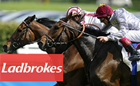How to get the Ladbrokes Bonus, Plus Terms and Conditions to Know
